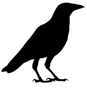 bird-silhouette-png-silhouette-of-robin-png-pigeon-silhouette-png-crow-a4rhb9-clipart