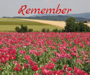 remember-by-debby-gies