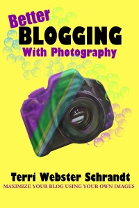 Better Blogging with Photography