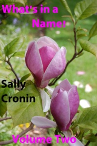 What's in a Name Vol. II by Sally Cronin